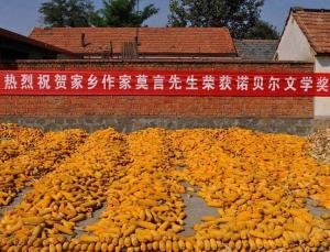 Mo Yan corn