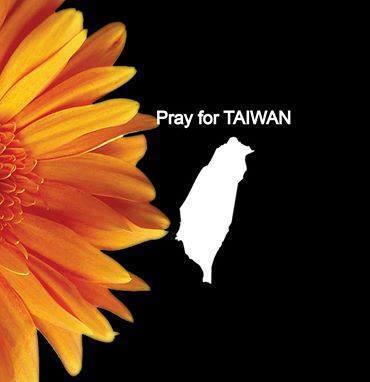 SUNFLOWER TAIWAN