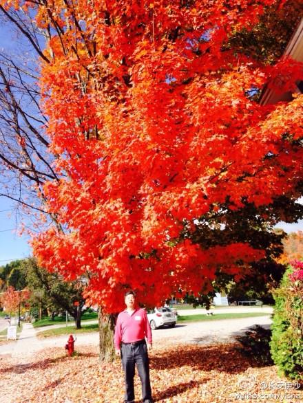 Baum und Yi Sha