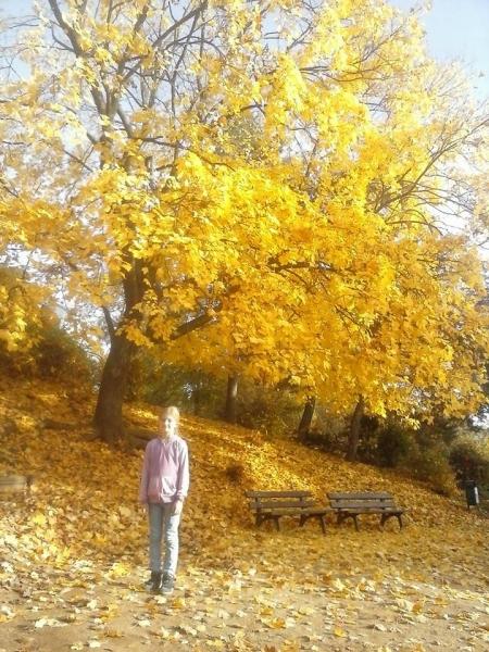 Brno_Autumn_2015
