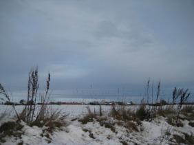 första snön! (16)